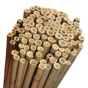 Extra Strong Durable Bamboo Garden Canes for Plant Support and other Gardening Projects