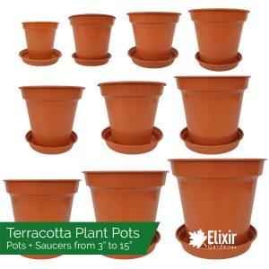 Plastic Terracotta Plant Pots and Saucers