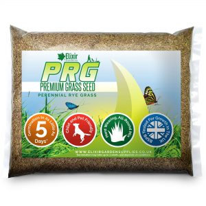 patch repair lawn rescue premium hard wearing grass seed